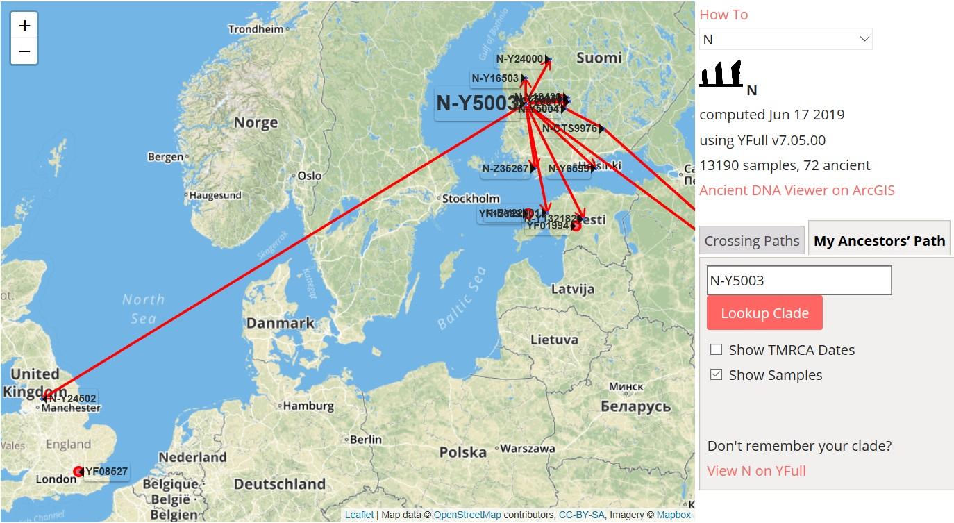 N-Y5003 – A Prolific Finnish Lineage in Viking Age England – Mygrations